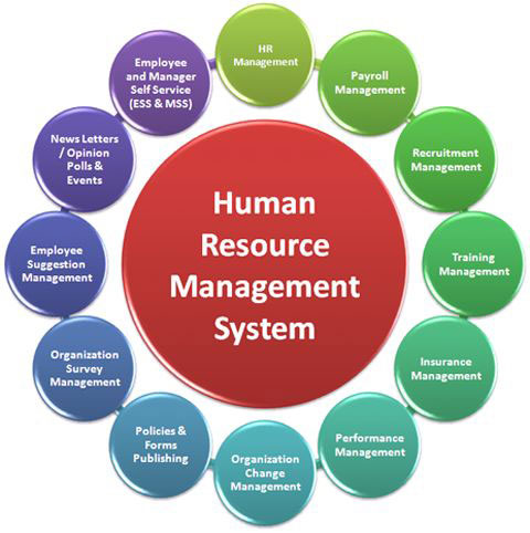 employee relations in human resources management commerce essay Explore our collection of resources on employee relations  online journals, exam papers and log into the vle people management.