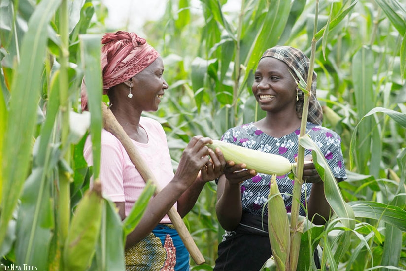 Women are encouraged to engage in income generating activities. (File)