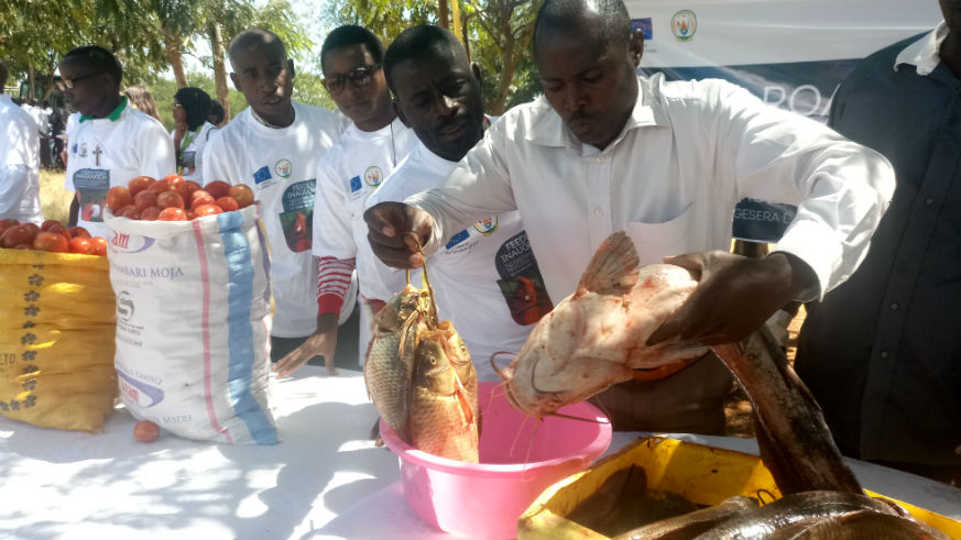 A farmer displays a variety of fish which was on display during the launch of Nzangwa-Gasenyi feeder road in Rweru Sector, Bugesera District, Wednesday, May 30, 2018. / Emmanuel Ntirenganya
