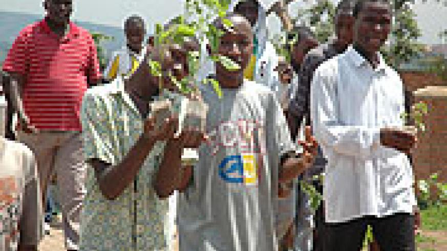 Rwandan youth carry trees for planting during the Environment Week (File Photo)