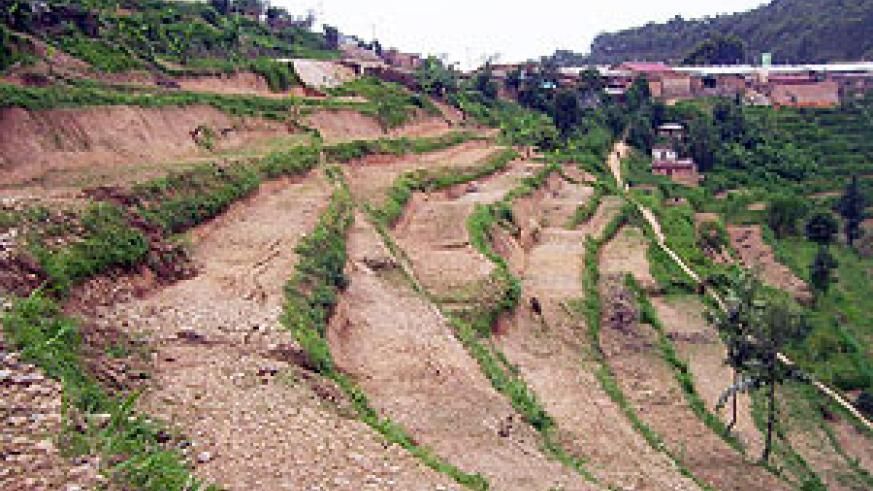 Some of the terraces constructed by residents who have not been paid in Rukomo Sector. (Photo: A. Gahene)