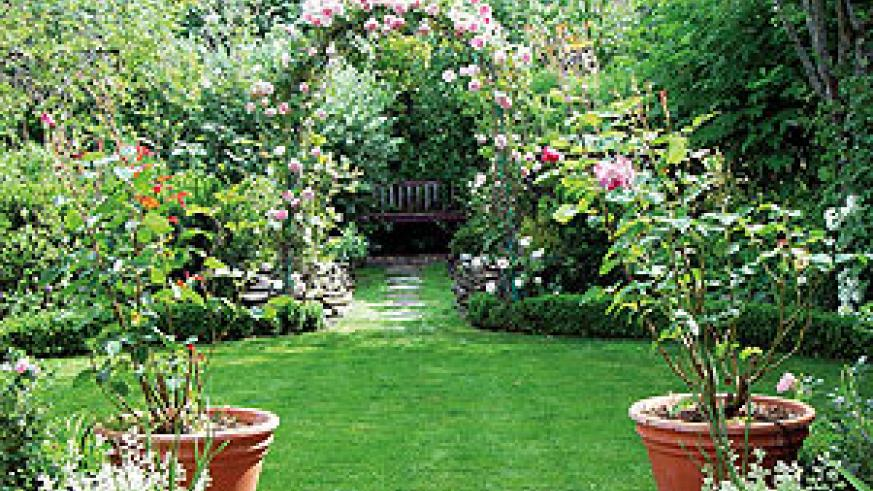 Traditionally grown over an arbour attached to the house, climbers, quite literally, tie the house to the garden.