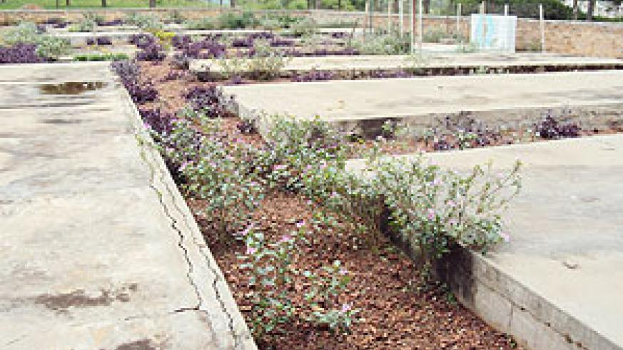 Kirehe Genocide memorial site is set for a major facelift. (Photo: S. Rwembeho)