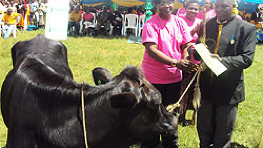 The Minister of Gender, Jeanne d'Arc Mujawamariya hands over a heifer to one of the guardians. (Photo R. Mugabe)