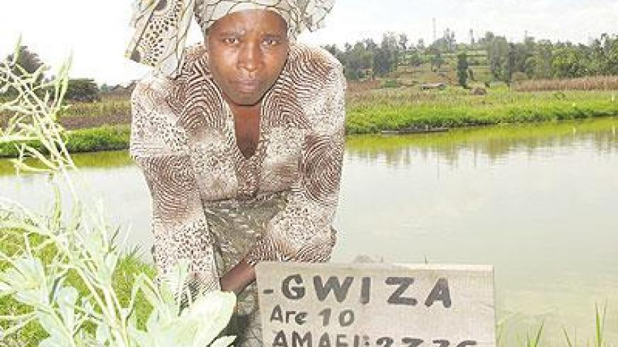Marie Grace Mukamusoni, at one of the fishponds.   The New Times / D. Umutesi