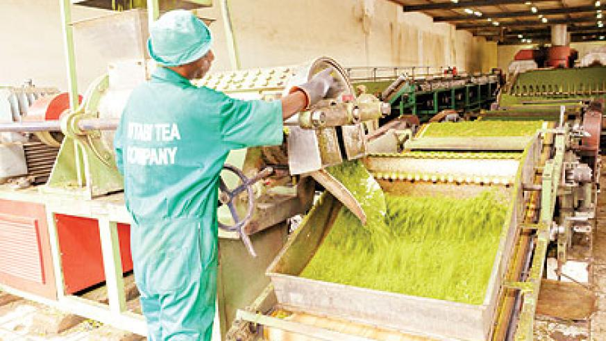 Government has already privatised three tea factories. The New Times / File.