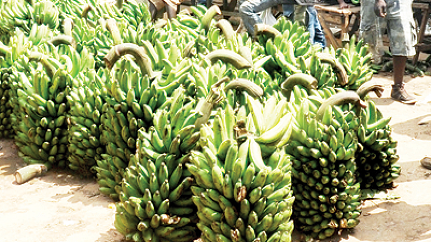 Unstable rains trigger slight rise in food prices. The New Times / File.