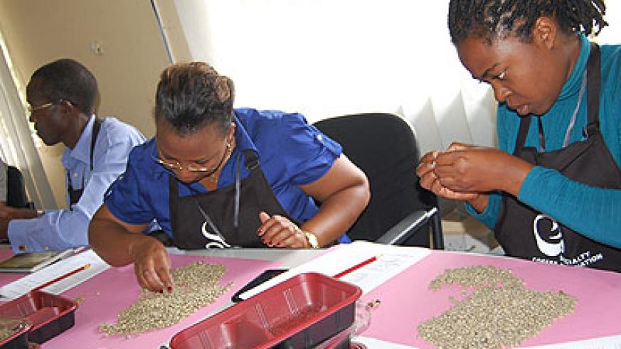 Trainees sieve coffee beans before roasting. The New Times / Courtesy photo.