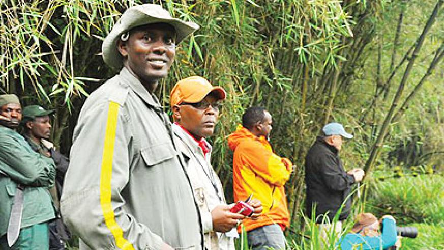 Tracking the gorillas in the jungle. The New Times/Moses Opobo