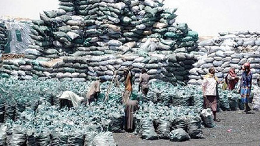 The UN estimates charcoal exports from Kismayo worth $15m to $16m a month. Net photo