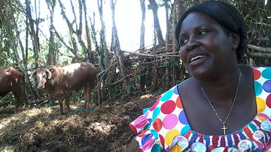 Besides working at Gisagara Health Centre, Kampororo is also a farmer. She also keeps a number of cows. The New Times/Jean-Pierre Bucyensenge