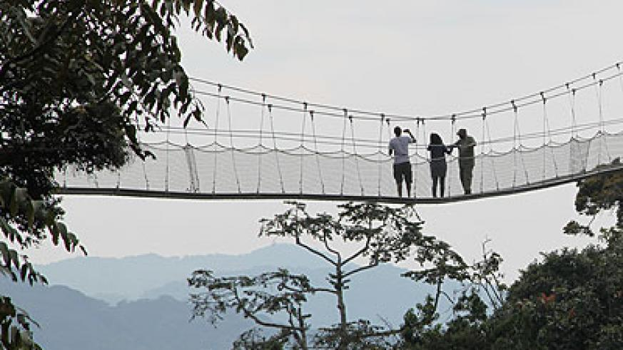 Tourists at a canopy in Nyungwe forest. (Timothy Kisambira)