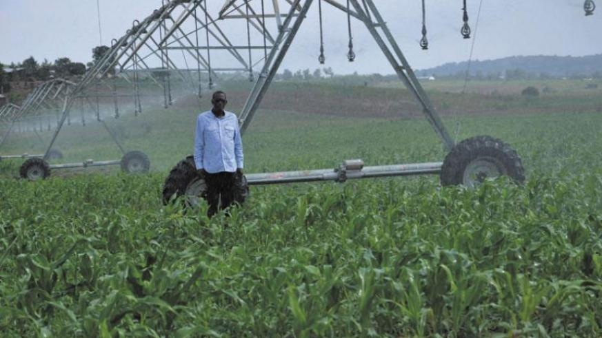 A commercial farmer stands next to an irrigation implement he uses to water his crops. (File)