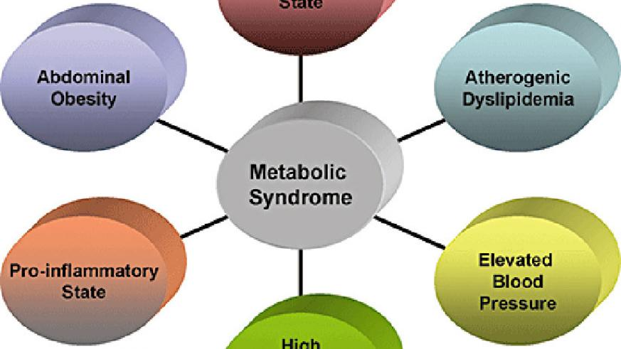 A graphic illustration of what precipitates metabolic syndrome. (Net photo)