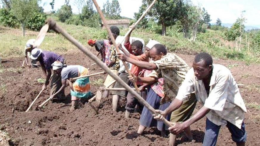 Some locals till land in preparation for planting. Value addition in agriculture is among the strategies being used to fight poverty. Net photo