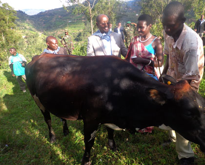 A Genocide widow admires the cow given to her by minaloc. Chating with her is Local Government minister, James Musoni. John Mbanda.