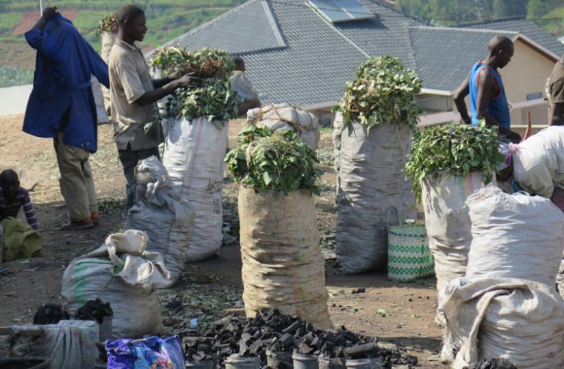 Charcoal on sale in Nyamagabe town. Nyamagabe and  Nyaruguru are among the top charcoal producers in the country.(Jean Pierre Bucyensenge)