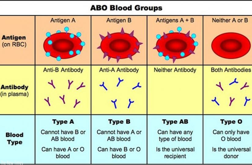 Do You Know Your Blood Group The New Times Rwanda
