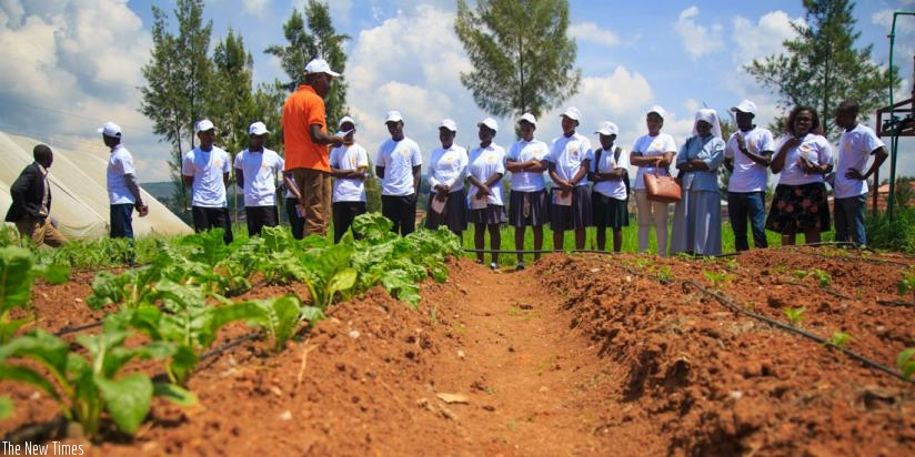 Students participating in the Farming is Cool project. (Timothy Kisambira)