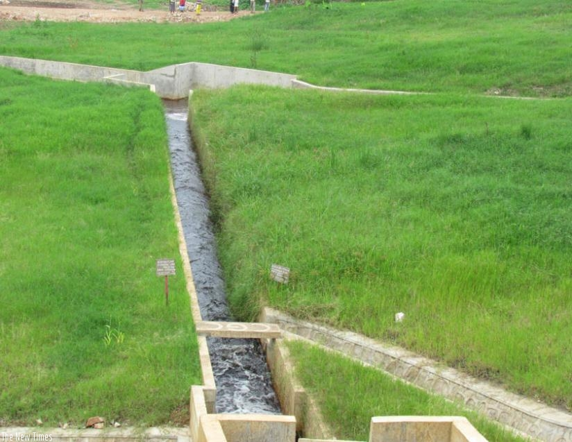 Irrigation channels have been constructed and are now ready for use. (S. Rwembeho)