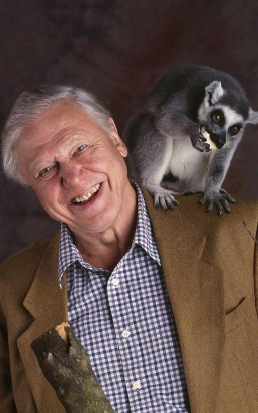 1469630512Sir-David-Attenborough