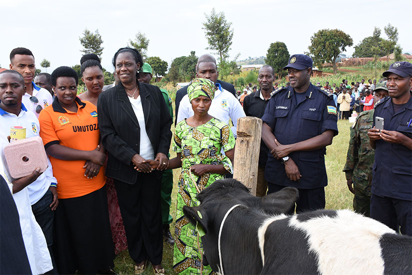 Mukabaramba (2nd left) and district officials distribute 40 cows to Gicumbi residents on Thursday. / Frederic Byumvuhore