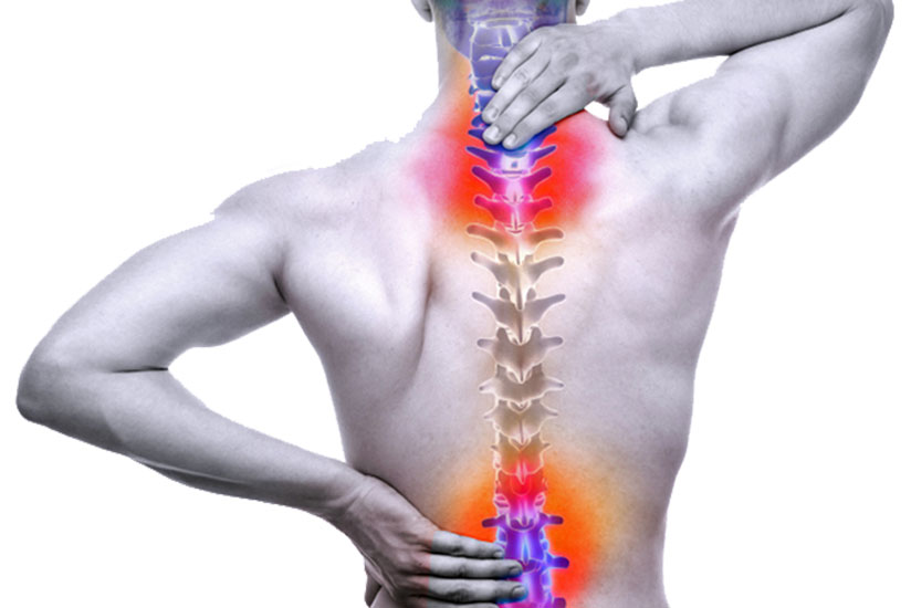 The Spine What You Need To Know About Spinal Cord Injuries The