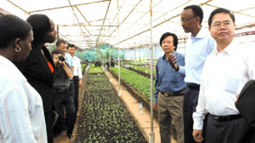 President Kagame discusses with Minister of State for Agriculture, Agnes Kalibata, during a visit to the Fruits and Vegetable Research Institute of the Vietnam Academy for Agricultural Reserach in Hanoi on Saturday. (PPU photo)