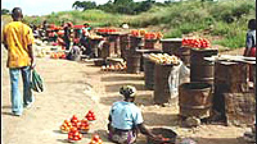 Many Zambians in rural areas depend on roadside markets for income.