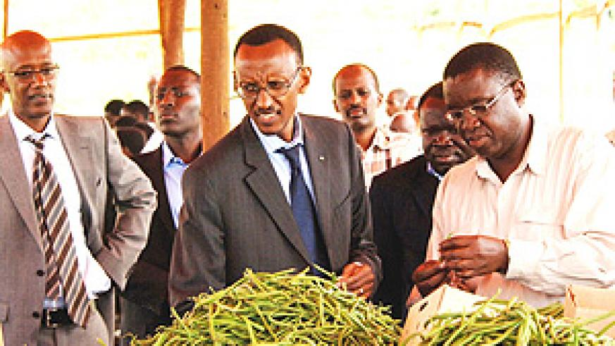 President Kagame flanked by senior government officials inspects string beans at a plantation in Masaka, Kicukiro District yesterday. (PPU Photo).