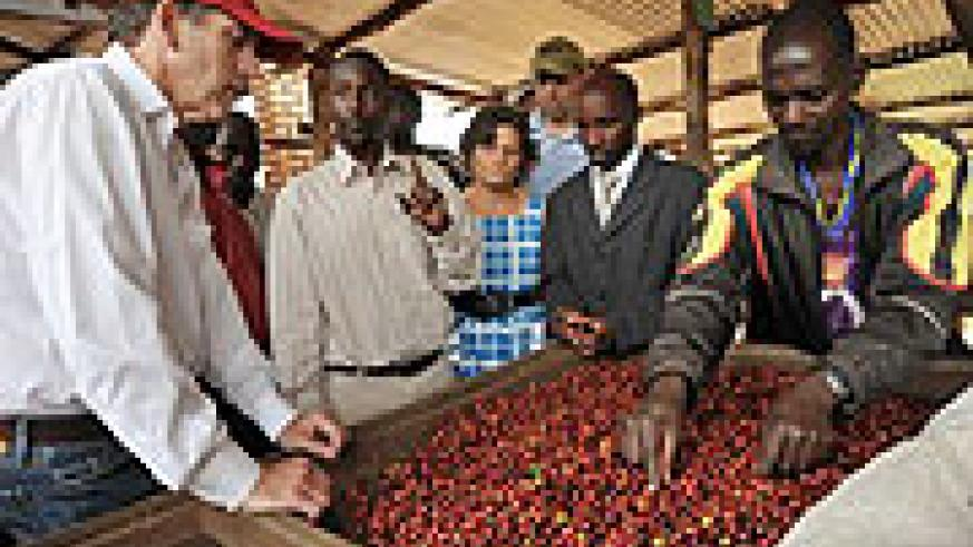 Schultz working with coffee farmers