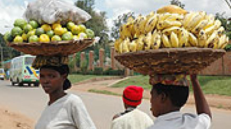 RHODA targets to increase export revenue from fruits  (File Photo)