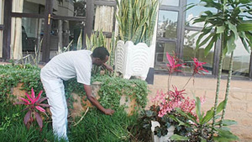 Flowers require care, time and regulated watering if they are to make your garden look baeutiful.