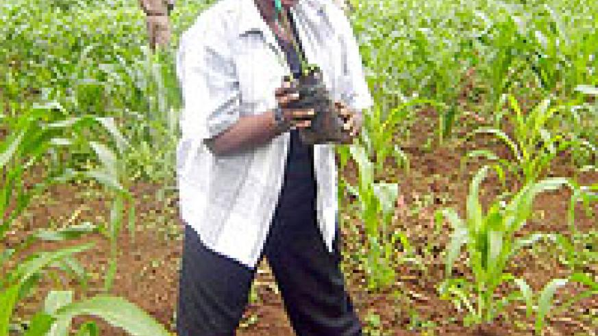 Mary Gahonzire in active tree planting in Rwamagana last week . (Photo / S. Rwembeho)