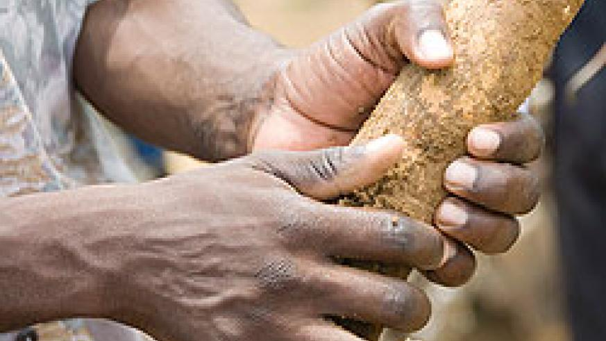 Cassava farmers in Kamonyi district to get processing plant.