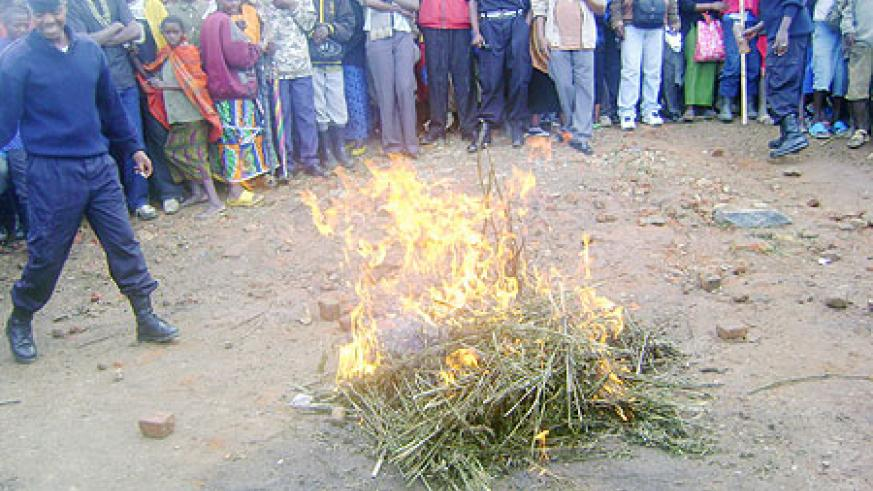 UP IN SMOKE: Drugs that were discovered in Nyungwe forest being set ablaze. (Photo: J.C. Gakwaya)