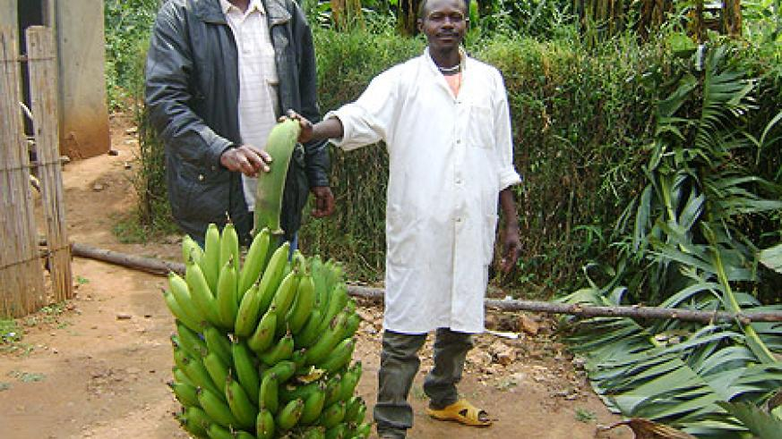 A farmer displaying his banana harvest (File Photo)