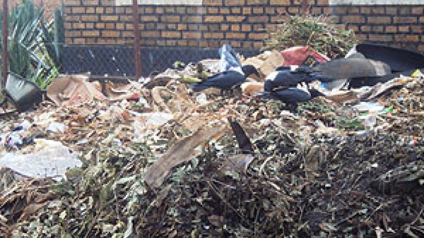 Scavengers on a garbage pile near a market in Rwamagana town (Photo; S. Rwembeho)