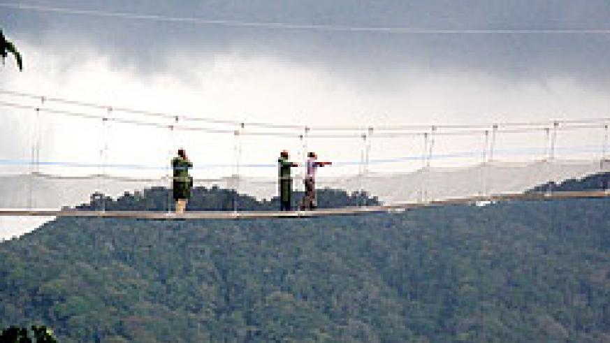 The newly launched canopy walk in Nyungwe (File Photo)