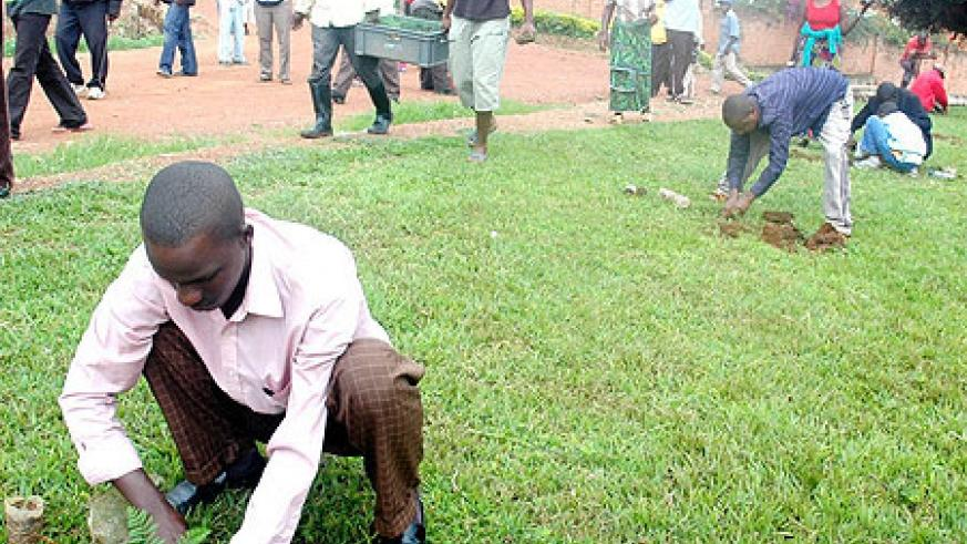 Tree planting is one way in which Rwandans are involved in environmental conservation. (File Photo)