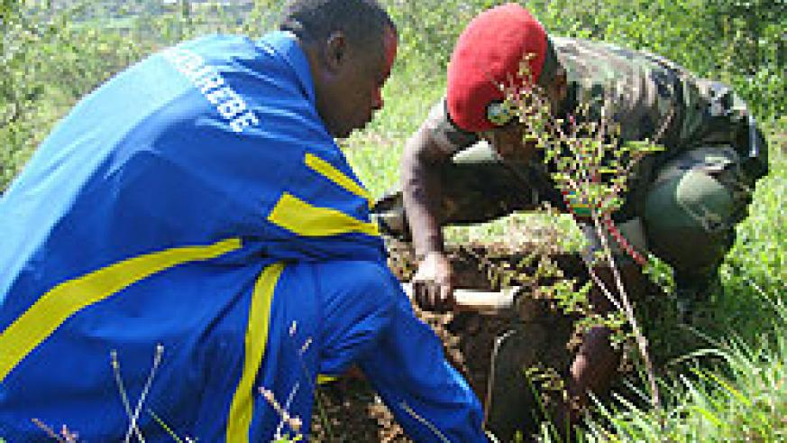 Defence Minister James Kabarebe participating in a tree-planting exercise in Kami yesterday (Courtsey Photo)