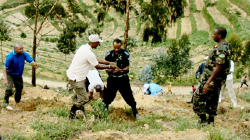 Governor Celestin Kabahizi (L) and other local leaders during the tree planting exercise in Karongi district.(photo / S. Nkurunziza)