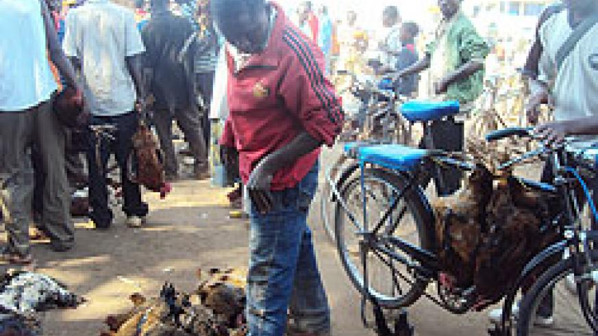 Farmers sold their chicken at  give away  prices after a break out of the disease in Rwamagana. (Photo  S. Rwembeho)
