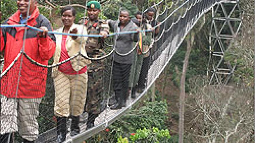 The canopy walk that was launched last year has boosted tourism revenue (File photo)