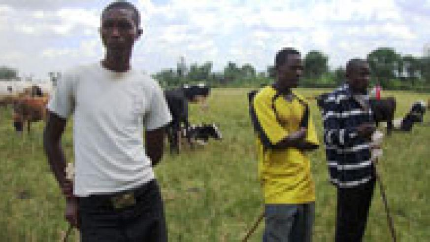 Beneficiaries being briefed before taking home their cows. Photo S. Rwembeho