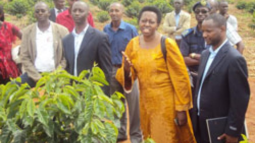 Governor Aisa Kirabo Kacyira and stakeholders from the coffee sector tour coffee farms. Photo by S. Rwembeho.