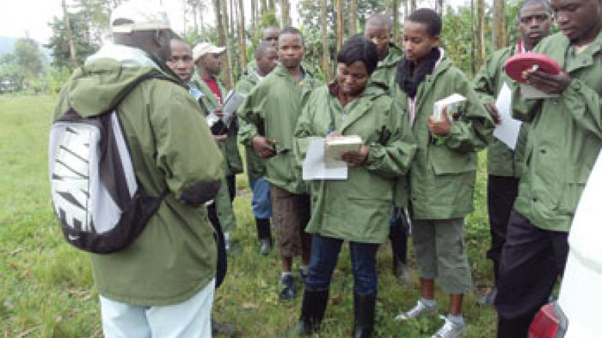 Students carry out field study facilitated by Karisoke.