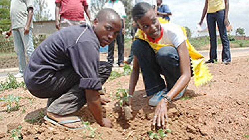 Miss Kigali, Cynthia Akazuba in a tree planting campaign. Rwanda's reforastation drive is set to receive global recognition (File Photo)