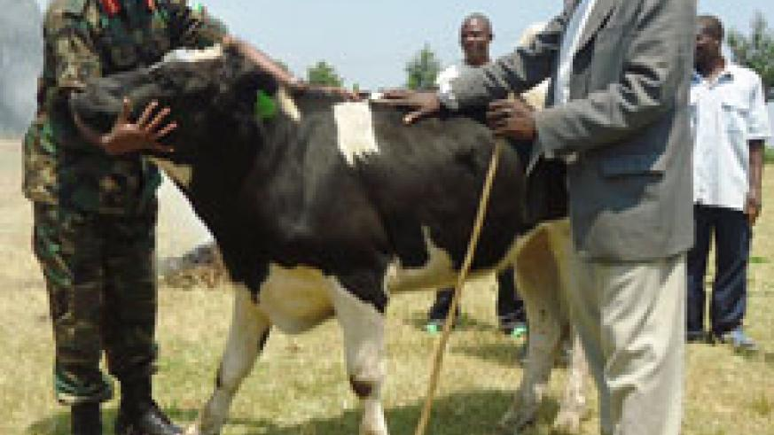 The RDF Chief of Staff Lt. Gen Charles Kayonga hands over a cow to one of the benefiaries in Rutsiro District last Friday The New Times /S. Nkurunziza