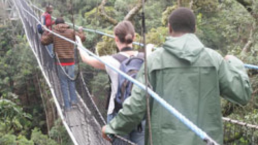 The country's sole canopy walk in Nyungwe Forest; Rwanda has continued to attract many British tourists. The New Times/ File.
